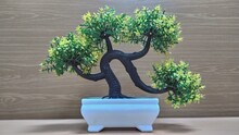 Bonsai Tree (artificial) With ...