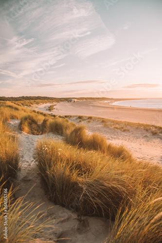 Photo sand dunes at sunset