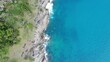 Green tree on island sea beach turquoise water nature landscape aerial view