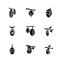 Butterfly Larvae Icon Or Logo ...