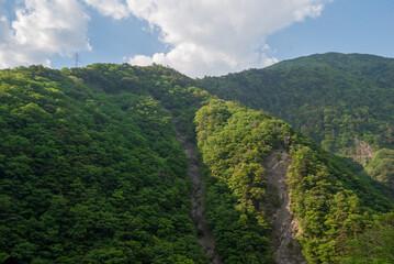 南アルプス山脈の新緑の山々の風景