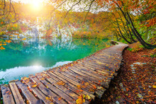 Cozy Wooden Footbridge Over Th...