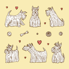 Pets. Vector Set Of Dogs. Hand Drawn Doodles Scottish Terriers.