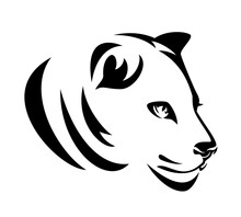 Beautiful Wild Lioness Profile Head Portrait - Black And White Vector Outline Design