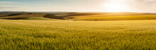Stunning Late Summer Afternoon Light Over Rolling Hills In English Countryside Landscape With Vibrant Warm Light