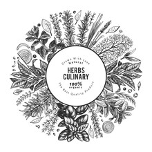 Culinary Herbs Banner Template. Hand Drawn Vintage Botanical Illustration. Engraved Style. Retro Food Background.
