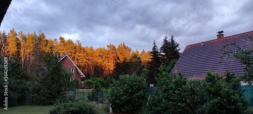 Fototapeta autumn in the mountains