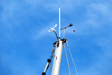 Weather Vane And Anemometer On...
