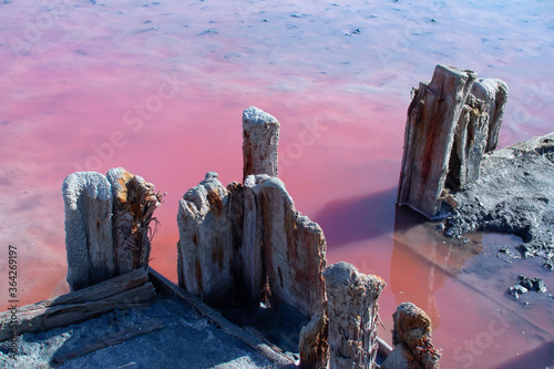 Сloseup salt, brine and mud of pink salty Sivash Lake near Azov Sea, colored by Canvas-taulu