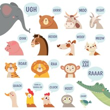 Animals Sounds. Cute Animal Ma...