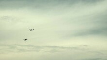 Two Armed Forces Helicopters I...