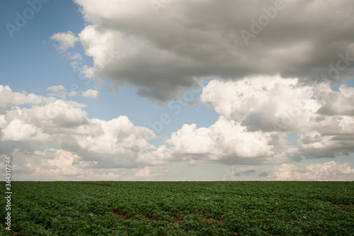 belgian countryside landscape with gray clouds Fototapet