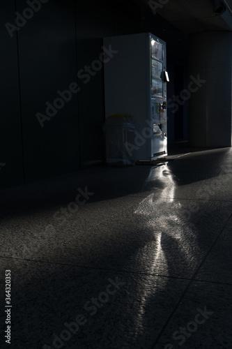 自動販売機が反射して床に移された光 Canvas-taulu