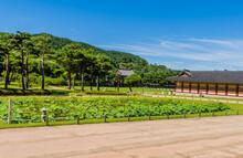 Buyeo, South Korea; July 7, 20...