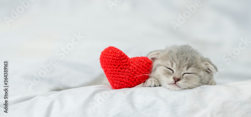 Obraz Sleepy kitten lies with red heart on a bed under blanket. Valentines day concept. Empty space for text - fototapety do salonu
