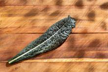 Kale Cabbage Leaves - Brassica Oleracea Var