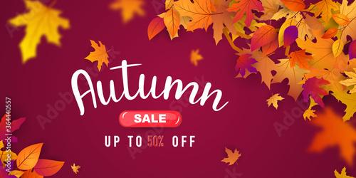 Obraz Autumn sale falling leaves background nature - fototapety do salonu