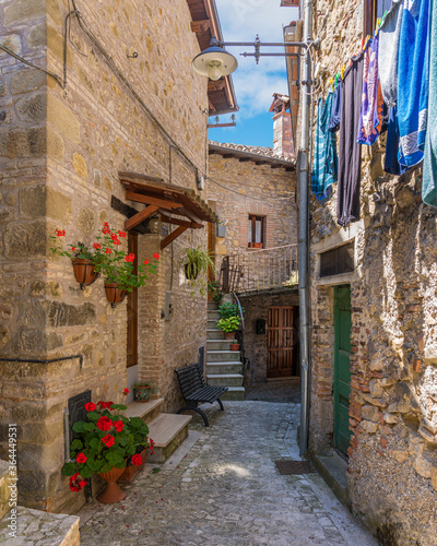 Fototapety, obrazy: The beautiful village of Poggio Vittiano near the Lago del Salto. Province of Rieti, Lazio, Italy.