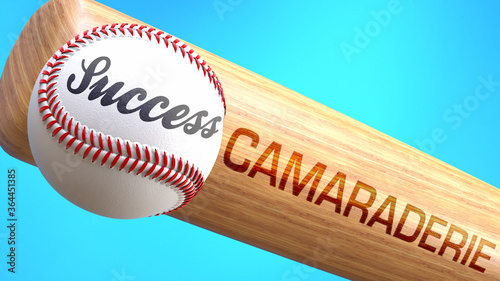Photo Success in life depends on camaraderie - pictured as word camaraderie on a bat, to show that camaraderie is crucial for successful business or life