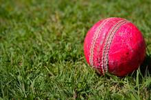 Red Ball On Green Grass.cricke...