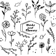 Cute Hand Drawn Set Of Graphic...