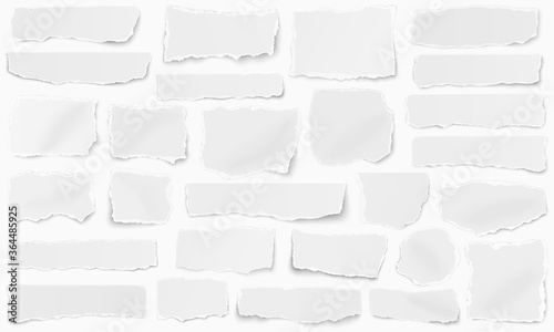 Tablou Canvas Horizontal set of torn pieces of paper isolated on a white background