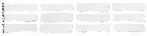 A long horizontal set of torn long pieces of paper isolated on a white background.