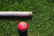 Cricket Ball And Bat Handle Is...