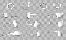 Torn Paper Transparent Set