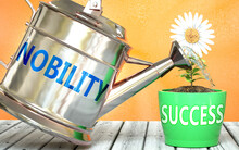 Nobility Helps Achieving Succe...