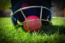 Cricket Ball Inside The Helmet...