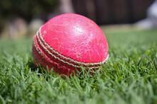 Cricket Ball On Grass. Closeup...