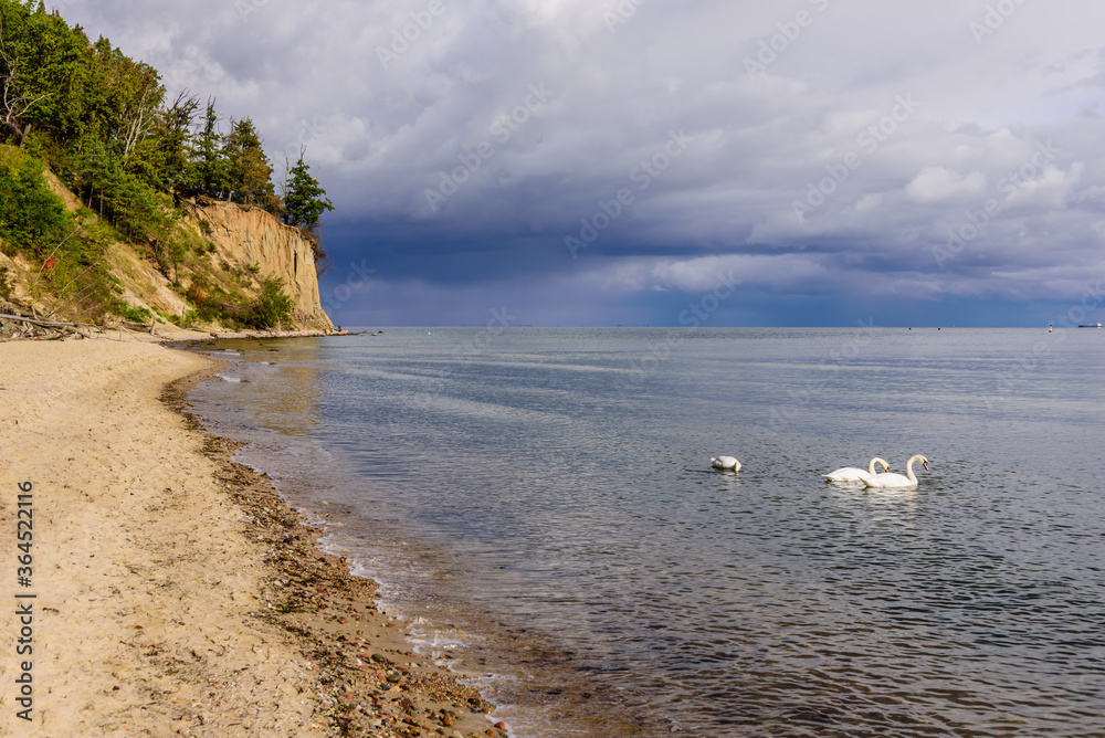 Picturesque coast of the Baltic sea. Orlowo cliff - popular tourist and natural attraction, Orlowo, Gdynia, Poland