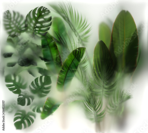 Fototapety zielone  plants-behind-the-glass-with-backlight-2-8x-2-5-h-meters-layout-ready-for-print-on-thin-film