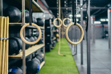 Gymnastic Rings And Ropes Hang...