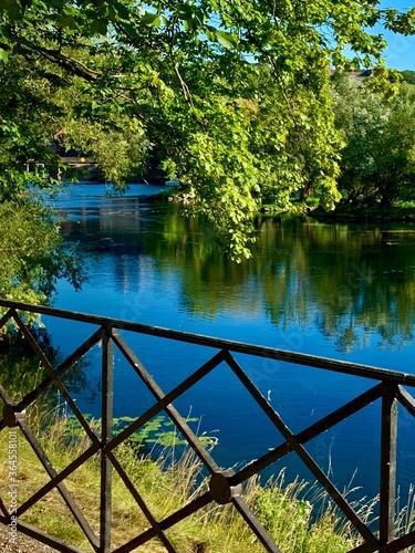 Photo Le fleuve derrière les arbres