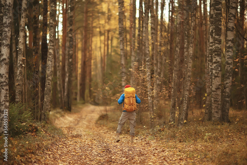 Foto tourist in the autumn forest on a forest road, an adventure in the October fores