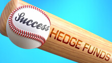 Success In Life Depends On Hedge Funds - Pictured As Word Hedge Funds On A Bat, To Show That Hedge Funds Is Crucial For Successful Business Or Life., 3d Illustration