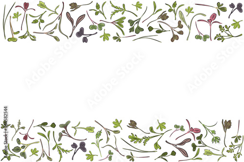 Photo Vector frame with microgreen