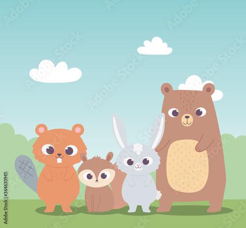 cute beaver squirrel bear and little rabbit cartoon animals #364630945