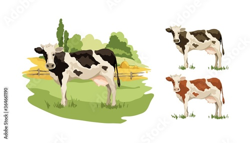 Tablou Canvas Blank for label with cow in different colors