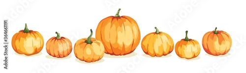 Fototapeta Watercolor pumpkins. Vector illustration in watercolor painting style. Background for Thanksgiving Day or harvest festival. obraz
