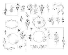 Set Of Botanical Design Elemen...