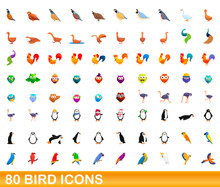 80 Bird Icons Set. Cartoon Ill...