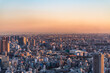 """Tokyo, Japan - November 16, 2019: Shibuya Scramble Square opened in November 2019 in Shibuya, Tokyo, Japan. The rooftop """"""""Shibuya Sky"""""""" can take charge of the view from 229m above the ground."""