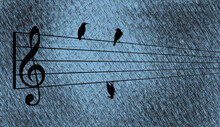 Birds Rest On A Music Staff As...