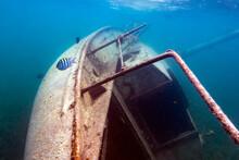 Underwater Sailboat Shipwreck ...