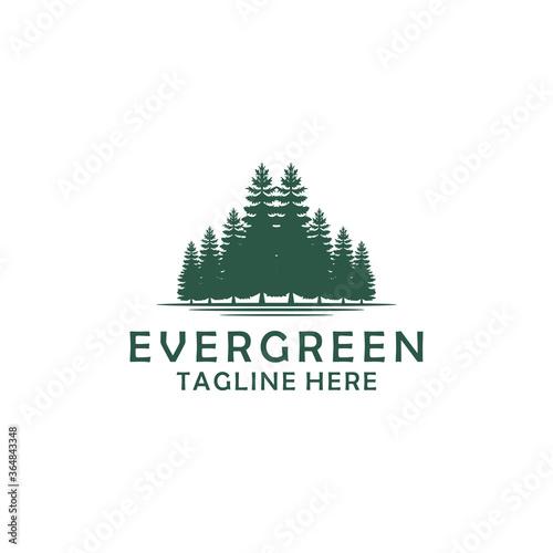 Obraz Evergreen, Pines, Spruce, Cedar trees logo design - fototapety do salonu