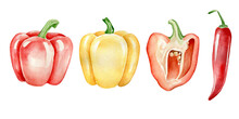 Hand Drawn Watercolor Peppers Set.Pepper Isolated On White Background