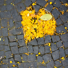 Yellow Heart On The Ground
